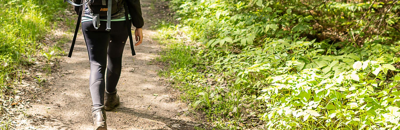 Limerick-Lake-Hiking-Trails